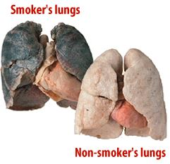 dangerous-effects -from-smoking
