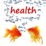 Attain Healthier Weight