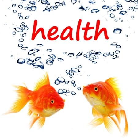 health-fish